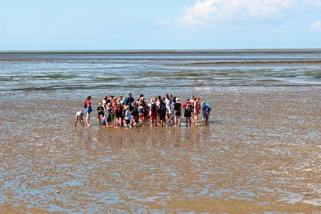 hiking in the North Sea at low tide Editorial
