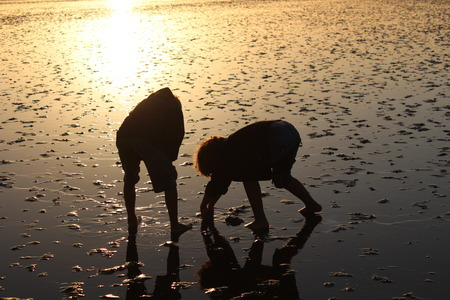 children are playing in the north sea at low tide photo