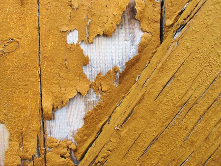 painting is bursting from wood photo
