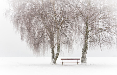 atmospheric: Bench in the snow Stock Photo