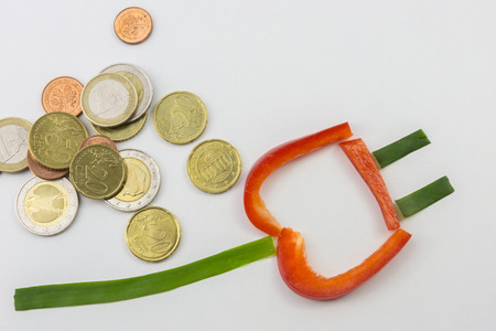 power of money: Power connector and money Stock Photo