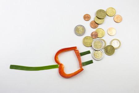 increase fruit: Power connector and money Stock Photo