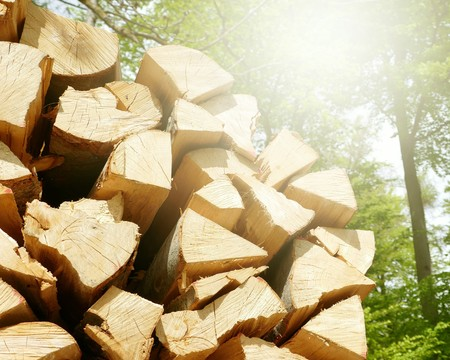 stack of firewood: Stack of firewood in the sun