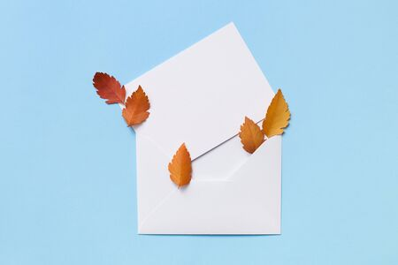 Layout of red leaves laying on an empty postcard in the envelope on the blue background Stockfoto