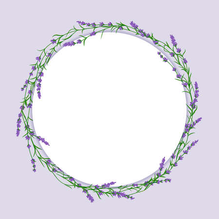 Lavender flower circle vector ittustration. Postcard layout mockup