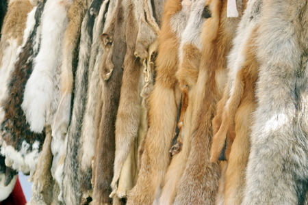 Close-up of various furs - dark, silver and red. Stock fotó