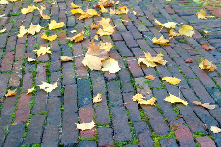 Yellow leaves on the old pavement of the 18th century. Stock Photo