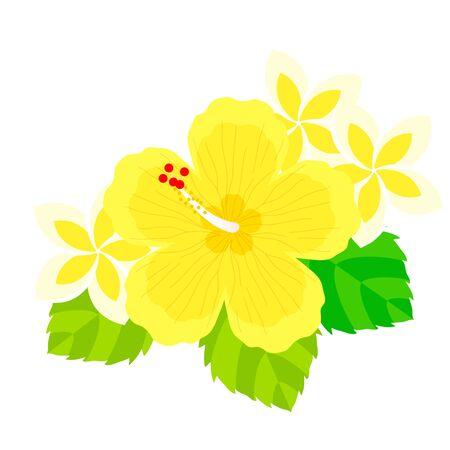 Hibiscus and Plumeria Illustrations Иллюстрация