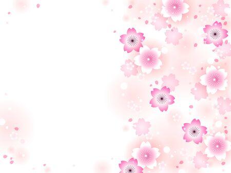 Illustration frame of cherry blossoms