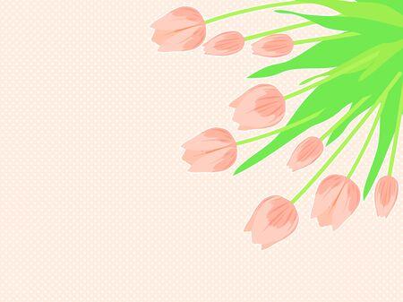 Pink Tulip Illustration Background  イラスト・ベクター素材