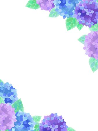 Hydrangea illustration background, watercolor, blue and purple flowers