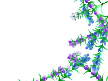The background of the illustration of the flower of the dragon gall, the watercolor style