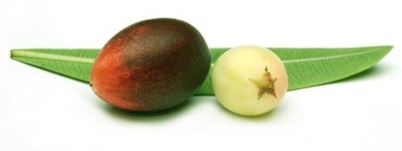 two fruit Stock Photo