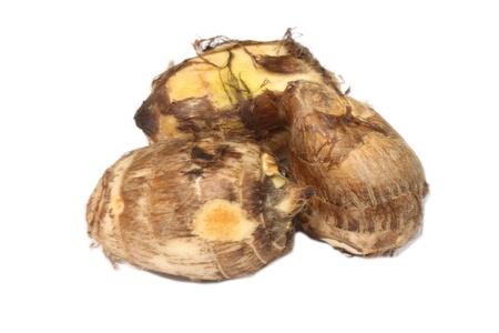 esculenta: Colocasia esculenta