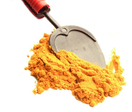 turmeric powder with  sppon