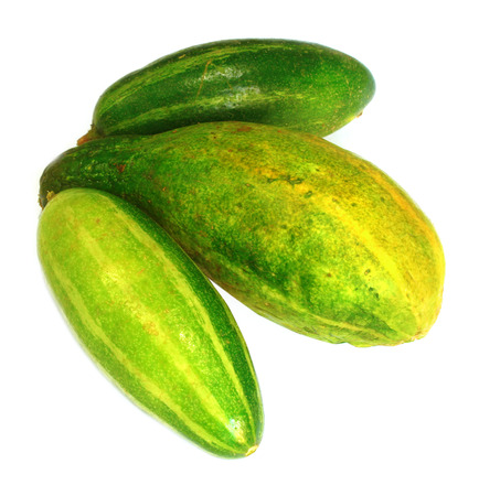 pointed gourd & cucumber