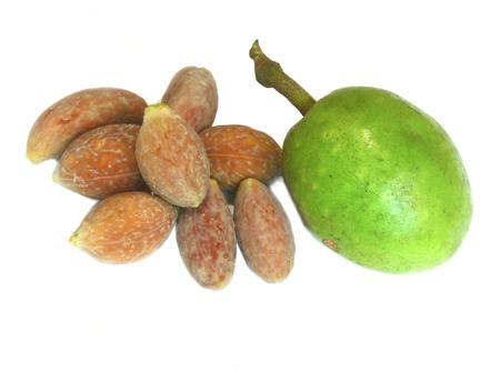 olive & seeds Stock Photo