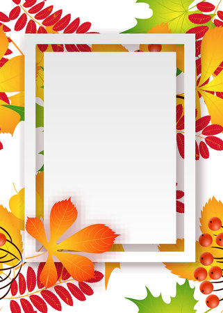 vector, pattern, frame with autumn leaves for greetings, invitations, cards, price tags Imagens - 87753067