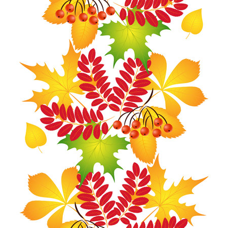 Pattern of colorful autumn leaves.