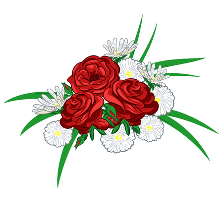 A compsition with roses and daisies for greeting card or wedding invitation Illustration