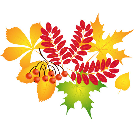 seamless pattern of autumn leaves for cards