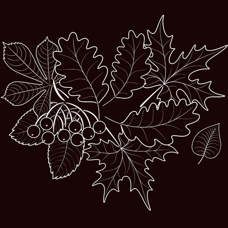 composition of autumn leaves against the background Illustration
