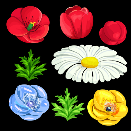 set of flowers on a black background for the design of cards, invitations