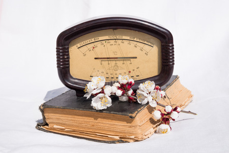 atmospheric pressure: Old antique barometer and a branch of a blossoming apricot tree as a symbol of spring and of the variability of the weather