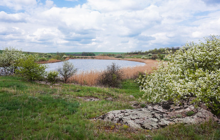 no rush: Deserted space. Ukraine, the border Nikolaev and Dnipropetrovsk regions