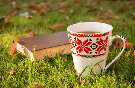 morning dew: Book and cup of hot tea on the background lawn, covered with morning dew and crimson leaves. Stock Photo