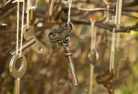pretentious: Antique keys and autumn garden. The decor in the style of decadence Stock Photo