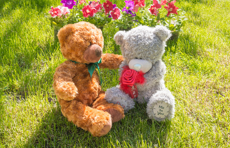amorousness: Two Teddy bear on the bench in the garden. Romance and friendship