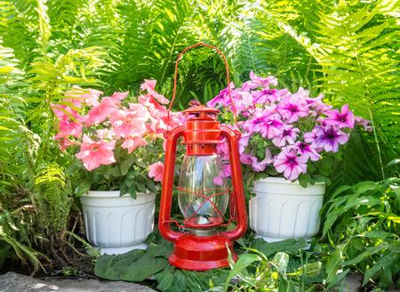 kerosene: Old kerosene lamp and petunias in the garden Stock Photo