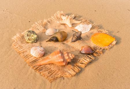 souvenirs: Marine Souvenirs