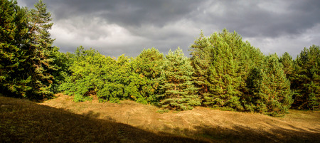 suspense: Autumn day in the forest. Sun and storm clouds Stock Photo
