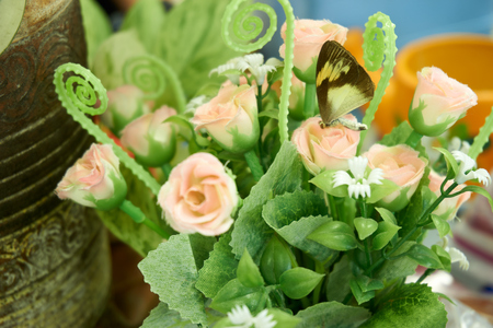 coger: la captura de la mariposa en la decoración se levantó en florero Foto de archivo