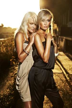 nearness: Two elegant blond women  Stock Photo