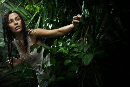 perl: Sexy young brunette beauty in a rain forest Stock Photo