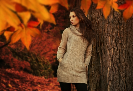 Young beauty in a autumn scenery photo