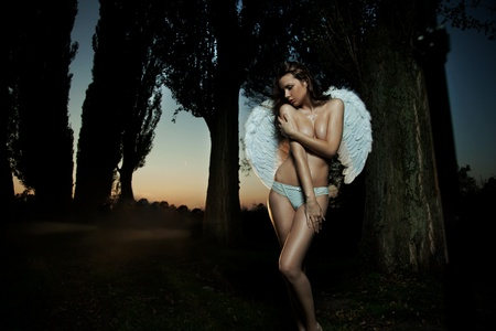 Female angel posing over an autumn sunset Stock Photo - 9077280