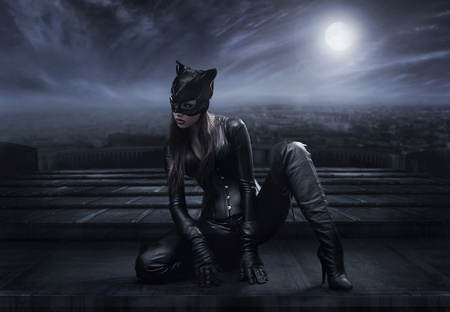 Catwoman sitting on the roof photo