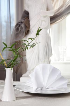 Beautiful tableware and napkins photo