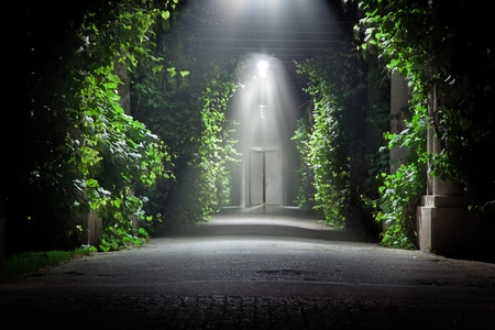 open doors: mysterious garden