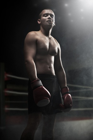 Portrait of attractive boxer in the dark photo