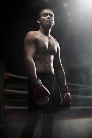 boxeadora: Retrato del boxeador atractivo en la oscuridad Foto de archivo