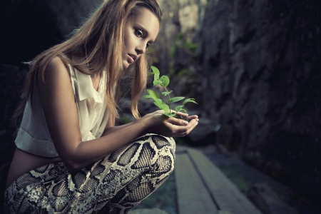 fragile: One plant in female hands Stock Photo