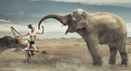 animal sexy: Sexy fashionable lady with elephant