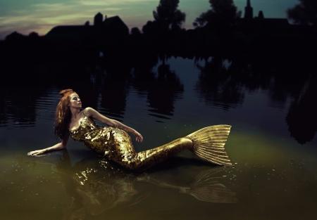 beautiful mermaid: Goldfish