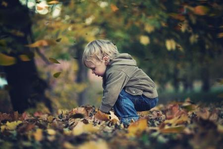 hermanos jugando: Ni�o peque�o y hojas de oto�o