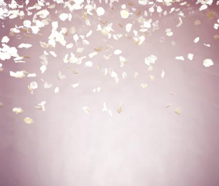 pétalas: Voando p